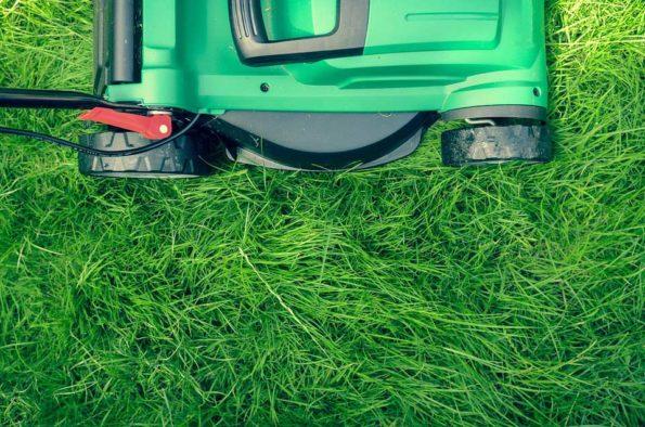 grass-1840929_960_720